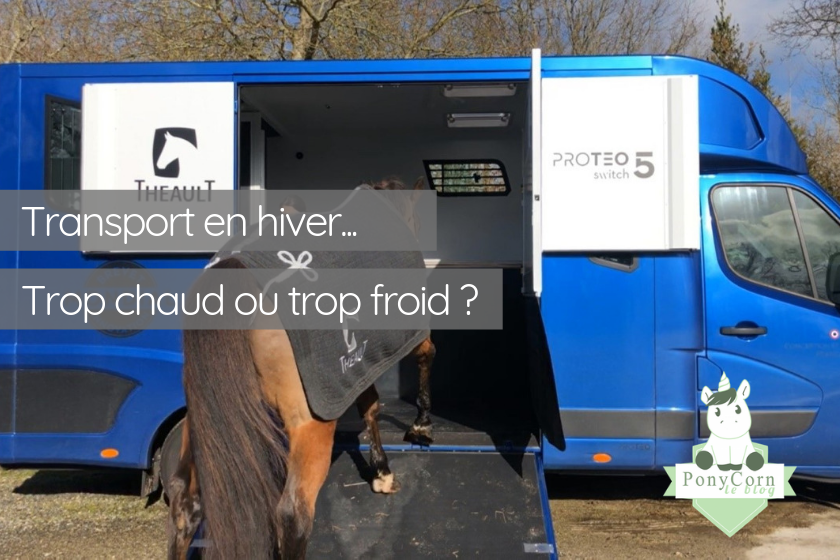Transport chevaux rennes